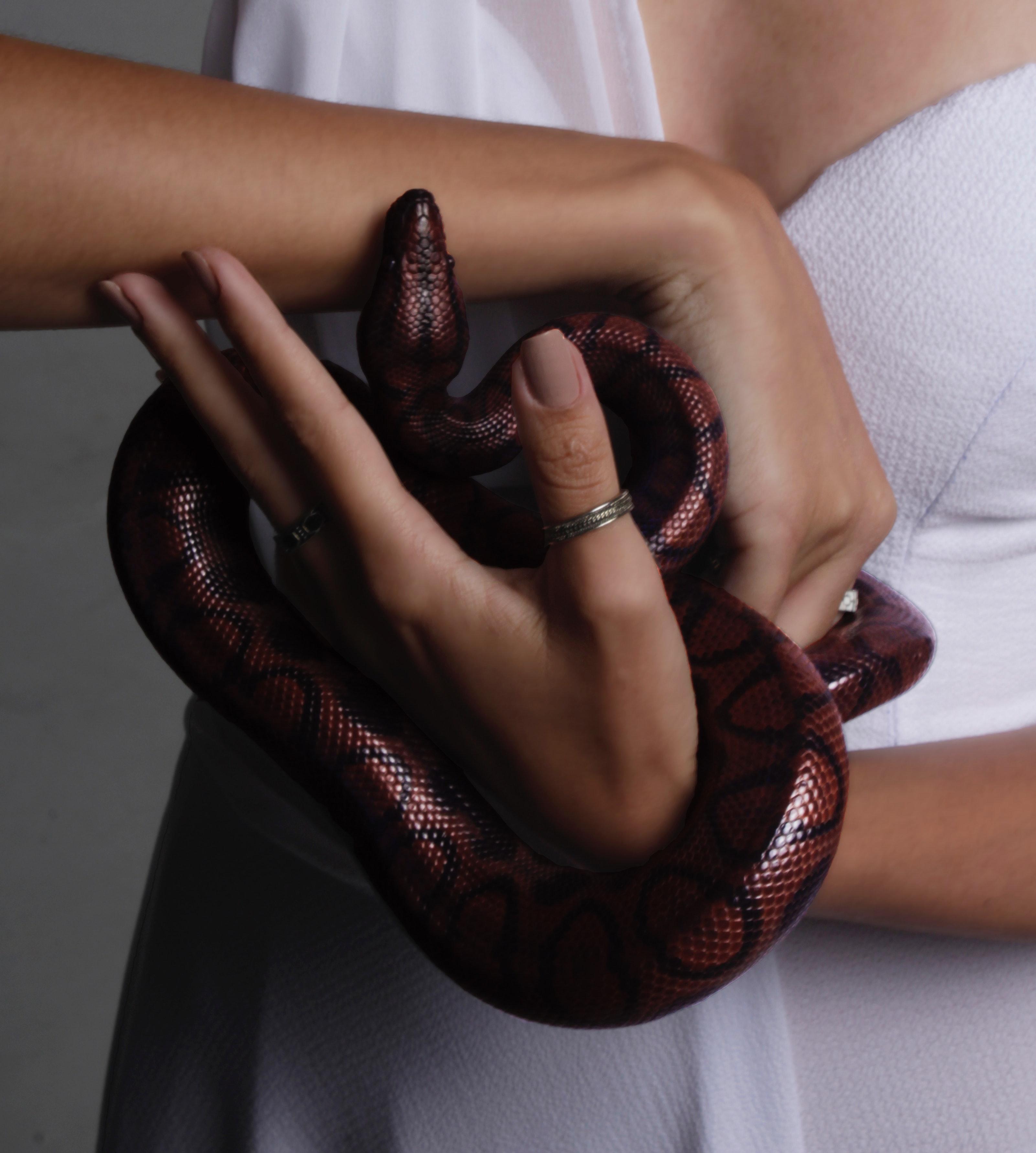 Secrets like snakes